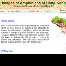 Amphibians of Hong Kong