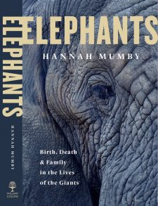 Elephants : Birth, Death and Family in the Lives of the Giants by Dr Hannah Mumby